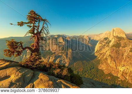 Panorama And Tree Of Glacier Point In Yosemite National Park, California, United States. The View Fr