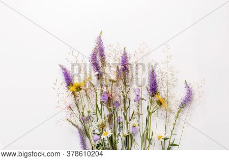 Floral Pattern With Wildflowers, Green Leaves, Branches On White Background. Flat Lay, Top View.