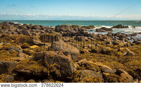 A Rocky Shoreline At Low Tide With Seaweed On The Rocks, At Abbey Burnfoot, Kirkcudbright, Southern