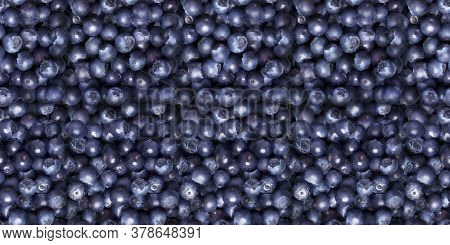 Ripe Bilberries. Sweet fresh whortleberries. Top view close up. Organic natural food for healthy eating. Ingredient berries for Food Packagion Design. Whortleberries Seamless pattern.