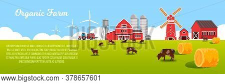 Organic Farm Vector Landscape With Green Meadow, Cows, Haystacks, Mill, Water Tower, Barn, Wind Turb