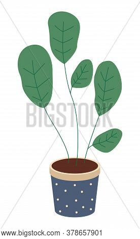 Pot With Houseplant Isolated At White Background. Vector Flowerpot Of Decorative Green Plant With Sh