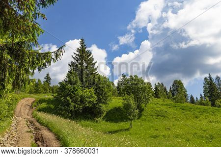 Mountain Summer Landscape. Road Uphill. Trail Among The Trees Against The Background Of Cloudy  Sky.