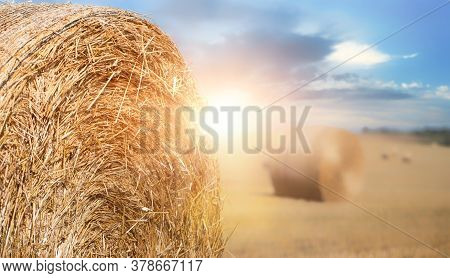 Big Round Bales On The Field At Sunset.