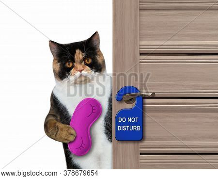 The Multi Colored Cat With A Purple Sleep Mask Closes The Door Of His Hotel Room.  A Blue Sign With