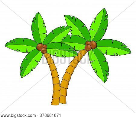 Palm Trees Cartoon Illustration.two Curved Coco Palm Isolated On White. Design Element For Summertim