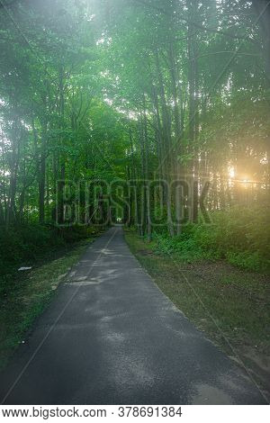 The Sun Cuts Through The Early Morning Fog On The Henry Hudson Trail In Monmouth County New Jersey.