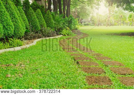 Pattern Of Laterite Stepping Stone On A Green Lawn Backyard In The Public Park, Curve Paving Pattern
