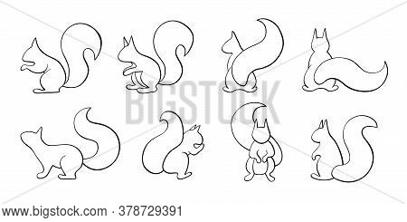 Vector Set Of Squirrel, Outline Squirrel Collection, Black Calligraphy Line Art, Indifferent Positio