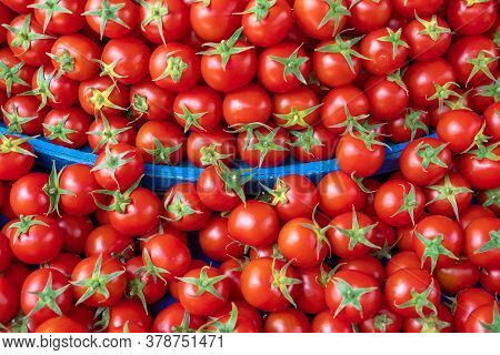 Ripe Tasty Red Tomatoes At Baazar For Sale