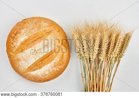 Round Bread And Bunch Of Wheat Ears. Fresh Crusty Bread And Ripe Wheat Ears On White Background. Hea