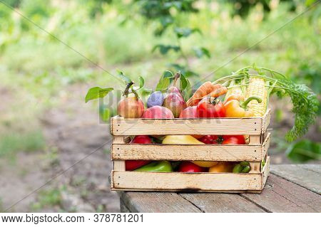 Wooden Crate Of Fresh Farm Vegetables And Fruit On Rustic Table Outdoors. Eco Food Concept