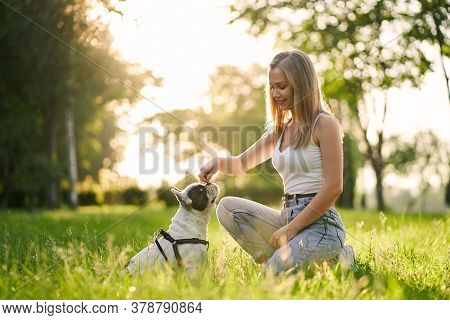 Side View Of Young Smiling Woman Training French Bulldog In City Park. Purebred Pet Smelling Treats