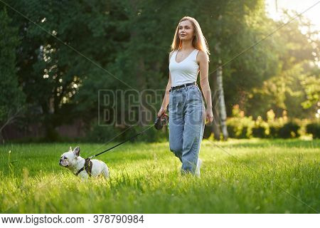 Pretty Woman Wearing Casual Outfit Smiling And Walking On Grass With French Bulldog On Leash. Gorgeo