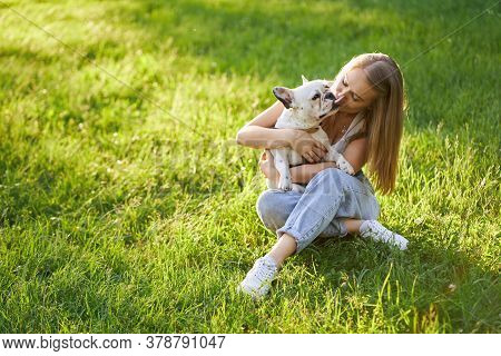 Lovely French Bulldog Kissing Attractive Human Female Friend. From Above View Of Stunning Caucasian