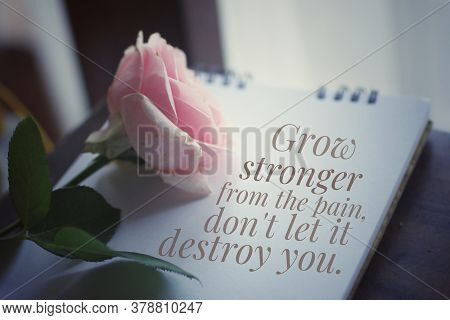 Pink Rose On A Book With Inspirational Motivational Message - Grow Stronger From The Pain, Do Not Le