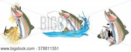 Trout Series Stickers With Predator Fish Bait Trout Series Stickers With Predator Fish Bait