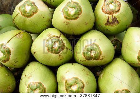 Heap Of Fresh Coconuts