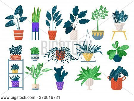 Green Houseplants In Pots Icon Set Of Isolated Vector Illustrations. Home Planted Greenery, Flowers