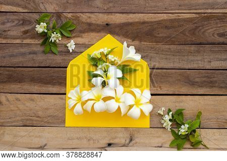 White Flowers Frangipani ,jasmine In Yellow Envelope Arrangement Flat Lay Postcard Style On Backgrou