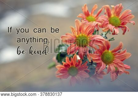 Kindness Inspirational Words - If You Can Be Anything, Be Kind. Motivational Quote Concept With Bouq