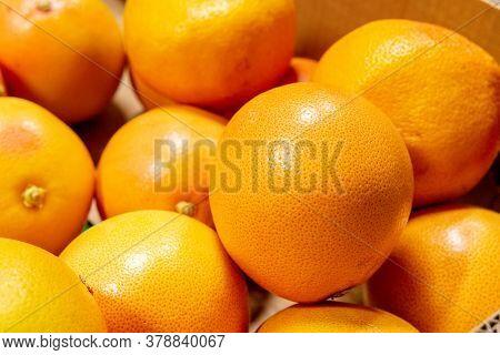 Grapefruit Harvest. Many Grapefruit. A Backdrop Of Grapefruits. Street Vegetable Market