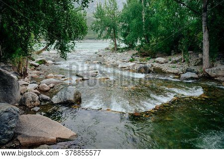 Scenic Landscape With Mountain Creek With Green Water Among Lush Thickets In Forest. Idyllic Green S