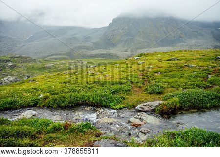 Vivid Green Alpine Landscape With Mountain Creek Among Rich Vegetation And Mountains Among Low Cloud