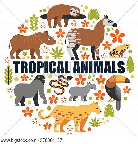 Tropicalanimals