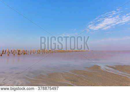 Pink Salt Lake Sasyk-sivash In Crimea. A Beautiful Fairy-tale Landscape With A Lake And A Blue Sky W
