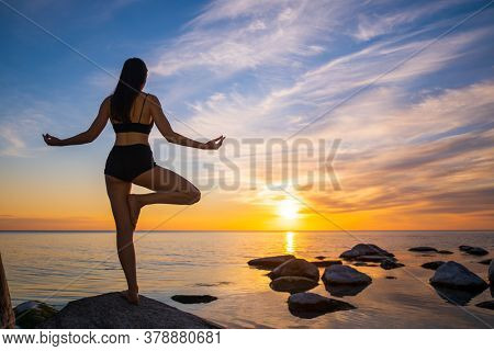 Back view of anonymous woman meditating in Tree pose on rocky coast near peaceful sea against cloudy sundown sky