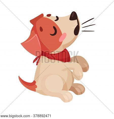 Jack Russell Terrier Character Barking And Wriggling Tail Vector Illustration