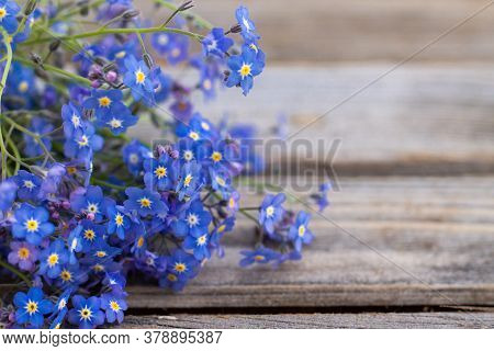 Partially Blurred Tender Flowers On A Rustic Wooden Surface. A Bouquet Of Forget-me-not On The Old B