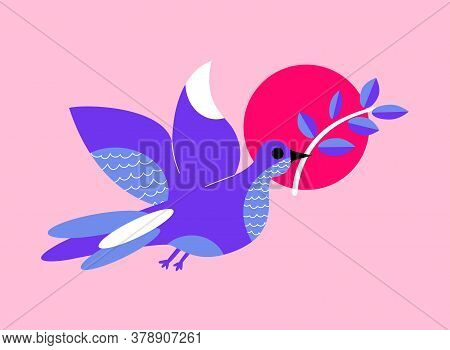 Dove Of Peace Flies And Holds An Olive Branch In Its Beak. Peace Pigeon. Purity, Spirituality And Ho
