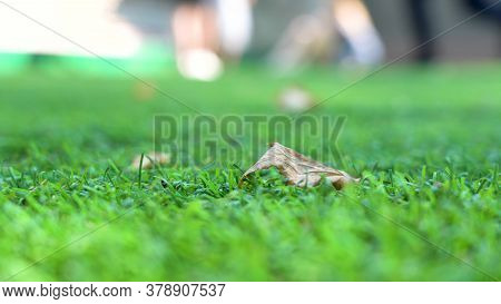 Artificial Turf. Macro Close-up Of A Soccer Field Turf. Fallen Dry Leaf In The Foreground. Autumn Is