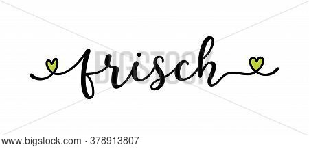 Hand Sketched Frisch Word As Banner In German. Translated Fresh. Lettering