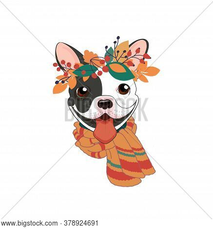 Cool Autumn Poster. Cute Smile Puppy With Autumn Foliage. French Bulldog Black And White With A Warm