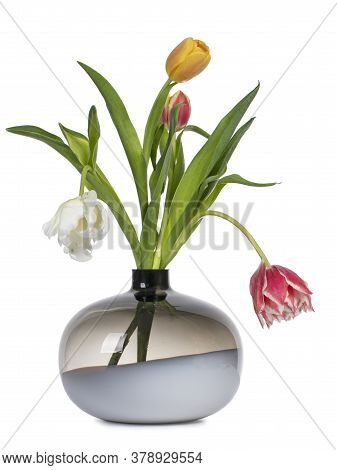 Bouquet Of Diffent Types And Color Tulips In Glas Vase. Isolated On White Background.