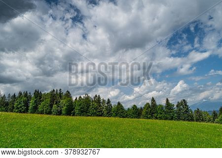 Summer Meadow, Landscape With Trees And Beautiful Clouds