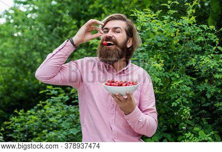 Vegetarian Cuisine Rich Vitamins. Happy Bearded Man With Sweet Cherry. Cherries For Breakfast. Cheer