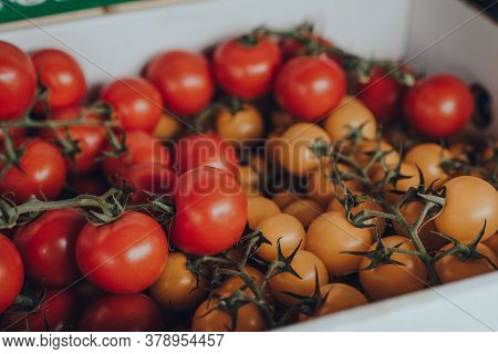 Fresh Red And Yellow Cherry Tomatoes On The Vine On Sale At A Street Market, Selective Shallow Focus