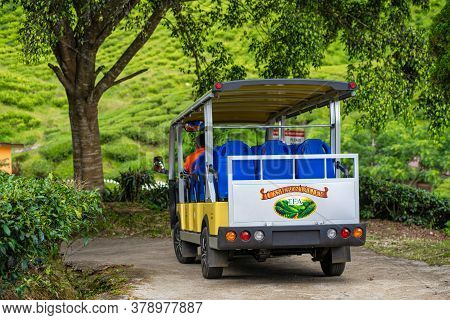 Electric Vehicle For Transportation Of Tourists And Visitors Of The Tea Valley. Cameron Highlands, M