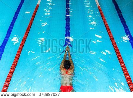 Swimmer Swims In The Swimming Pool. Top View, Swimming