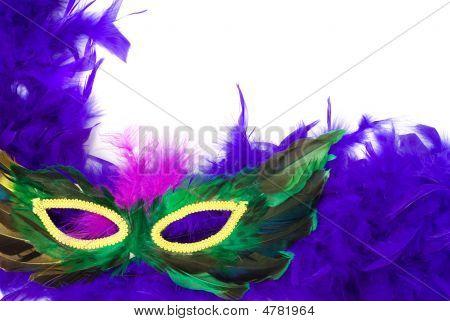 Closeup Feathered Mask