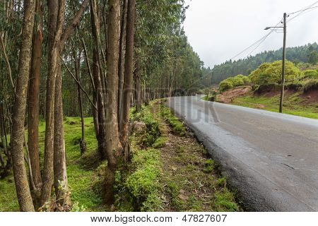 The road leading to the top of Mount Entoto just outside of Addis Ababa Ethiopia poster