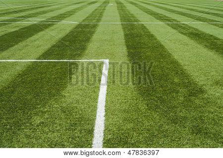 lines of soccer field