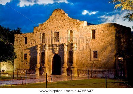 Alamo With Blue Sky