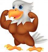 Vector illustration of Strong eagle cartoon isolated on white background poster