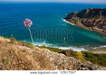Espichel Cape Landscape