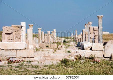 Laodicea Street